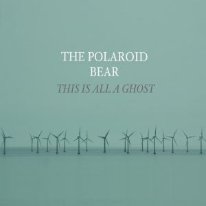 Picture of Interview: The Polaroid Bear at Stereofox