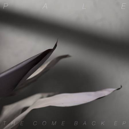 Picture of Album Review: PaleThe Comeback EP at Stereofox