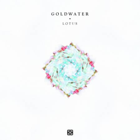 Picture of Lotus GOLDWATER  at Stereofox