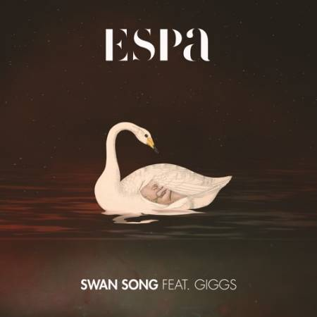 Picture of Swan Song (feat. Giggs) Espa  at Stereofox