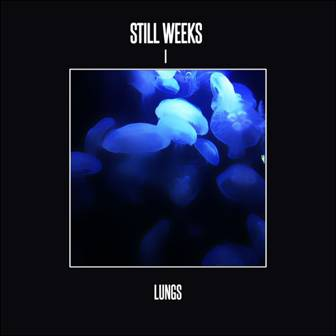 Picture of Lungs Still Weeks  at Stereofox
