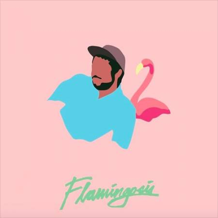 Picture of Ohhh Baby Flamingosis  at Stereofox