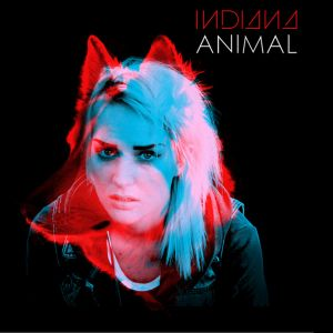 Picture of Video review: IndianaAnimal at Stereofox