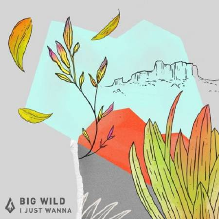 Picture of I Just Wanna Big Wild  at Stereofox