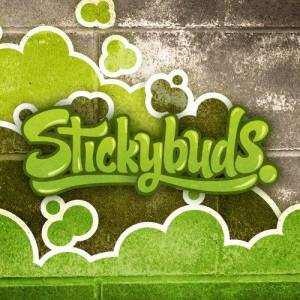 Artist Stickybuds at Stereofox.com