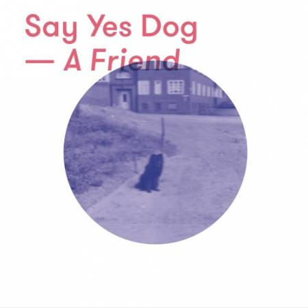 Picture of A Friend Say Yes Dog  at Stereofox