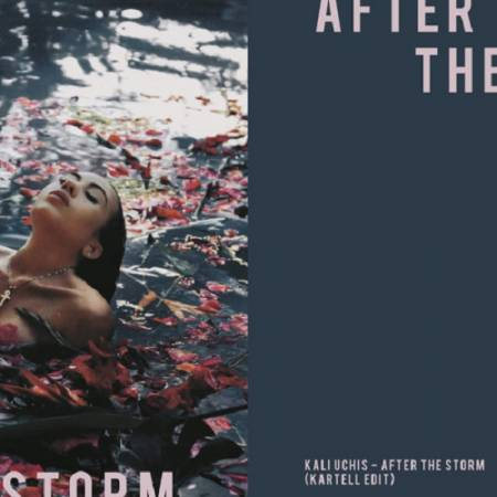 Picture of After The Storm (Kartell Edit) Kali Uchis Kartell  at Stereofox