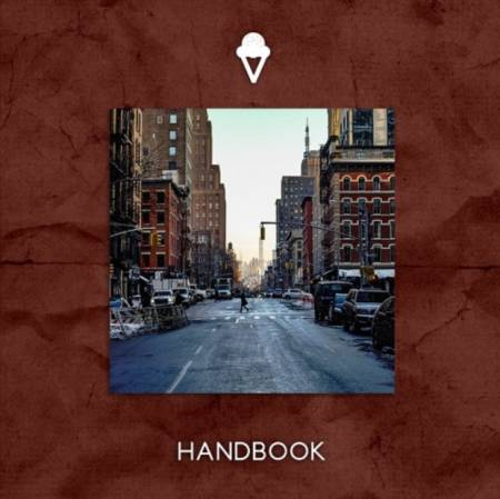 Picture of Wouldn't You (Like To Know) Handbook  at Stereofox