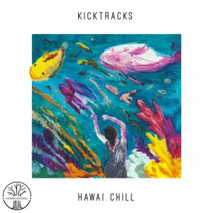 Picture of Hawai ChillKicktracks at Stereofox