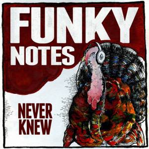 Picture of Never KnewFunky Notes at Stereofox
