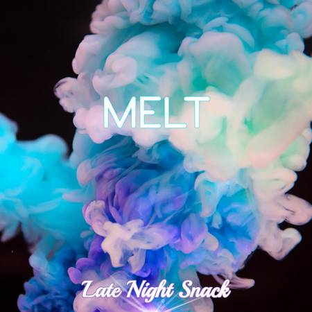 Picture of Melt Late Night Snack  at Stereofox