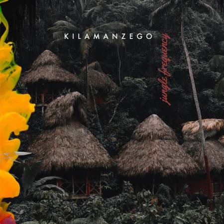 Picture of Jungle Frequency Kilamanzego  at Stereofox