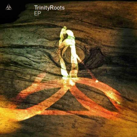 Picture of Little Things TrinityRoots  at Stereofox