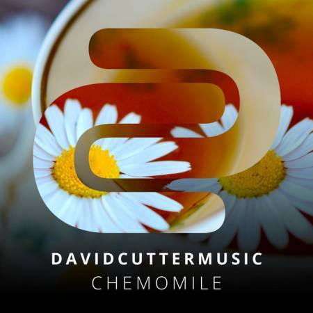 Picture of Chemomile David Cutter  at Stereofox