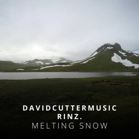 Picture of David Cutter MusicMelting Snow (ft. RINZ.) at Stereofox